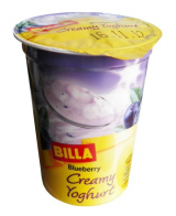 creamy yogurt blueberry Bill